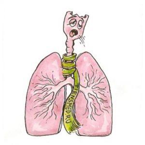 Кашель при пневмонии и бронхите