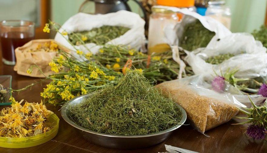 Травы в лечении поясничного остеохондроза
