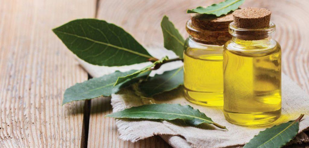 Компресс из лаврового листа и оливкового масла