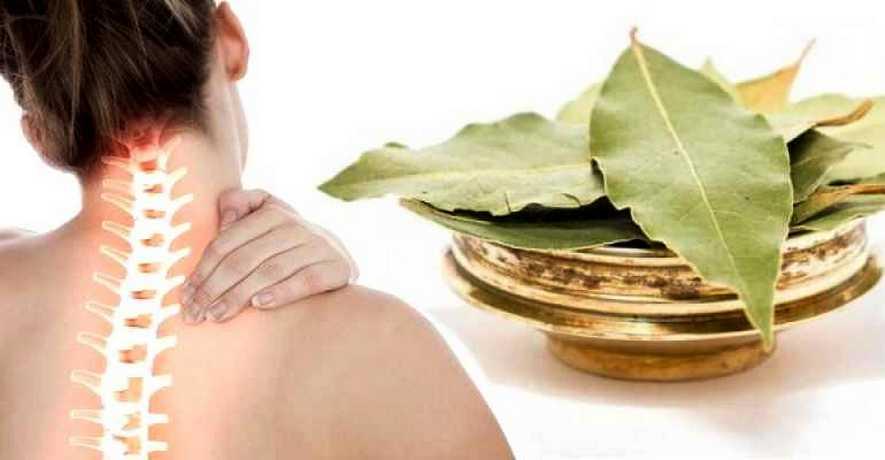 Лавровый лист при болях в спине
