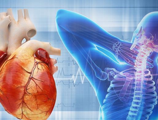 Связь между экстрасистолией и остеохондрозом